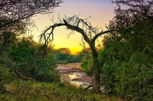 Botswana 0351NTC LO